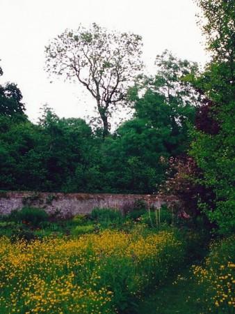 englischer Garten 2